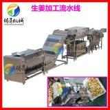 生姜加工设备 大姜/生姜去皮清洗切片流水线 定制款