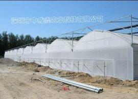 对称拱型 PC板连栋温室 花卉种植温室大棚
