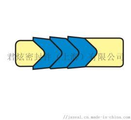 BLT车削密封R08-V活塞杆密封