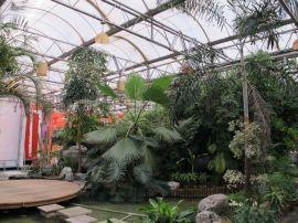 新疆阿克苏PC阳光板温室建造/  阳光温室安装/塔城大棚设计建造-河南歌珊温室