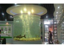 亚克力鱼缸定做工厂,哪里定做大型亚克力观赏鱼缸,商场大堂亚克力鱼缸现场制作