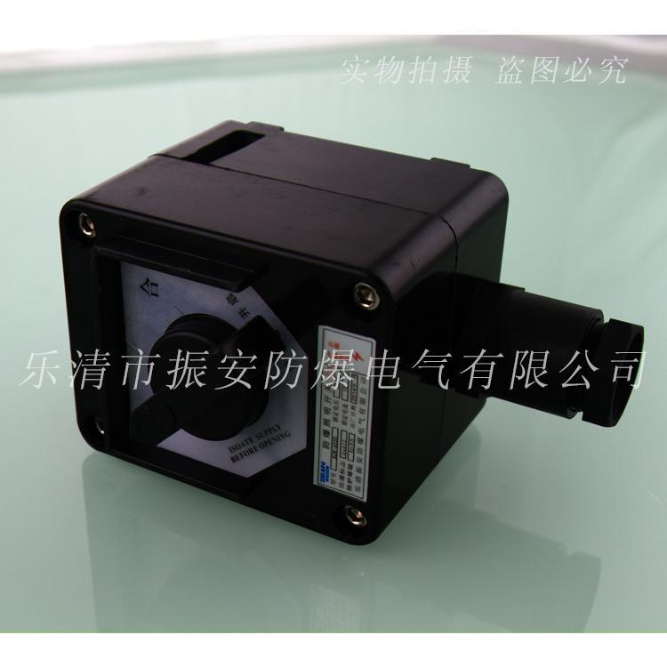BZM系列防爆防腐照明開關     振安防爆廠家直銷