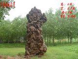 灵璧石,园林石