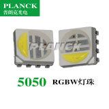 原厂全彩光源超高亮5050RGBW性价比贴片灯珠