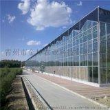 玻璃温室设计 玻璃温室大棚承建