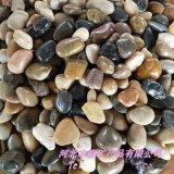 供應雨花石 精品拋光雨花石鵝卵石 家裝鋪路魚缸石頭