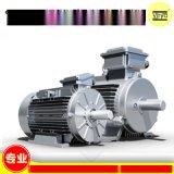 IE4欧洲  效标准电动机 Virya品牌