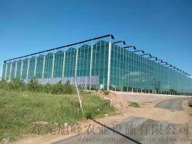 玻璃温室,智能玻璃连栋温室,玻璃智能温室-寿光旭峰