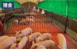 猪场升降帘 畜牧猪圈遮阳保暖侧帘卷帘定制