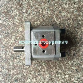 齿轮油泵CBT-E550