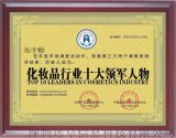 化妆品行业十大领军人物荣誉证书