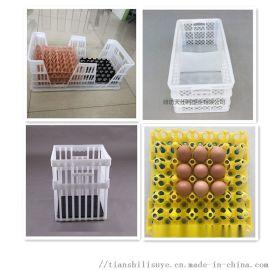 塑料运输蛋筐 种蛋运输筐规格 种蛋周转筐厂家