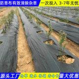 安徽防草布 编织除草布追求质量