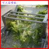气泡臭氧蔬菜清洗机 自动上料洗菜机 可连接风干机