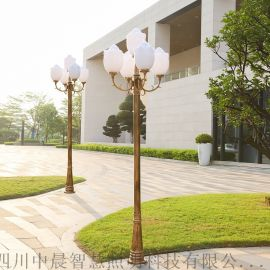 四川南充中式景观灯 蓬安路灯厂 3m