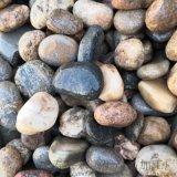 山東天然鵝卵石   永順雜色鵝卵石供應商