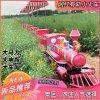 陝西西安騎乘式小火車網紅觀光小火車景區定製