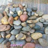 供应天然河卵石 鹅卵石滤料  园林景观铺路石