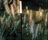 四川中晨太陽能戶外防水草地燈景燈觀花園燈