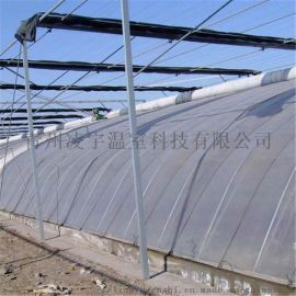 温室厂家专业建设农业大棚日光薄膜温室大棚