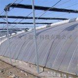 溫室廠家專業建設農業大棚日光薄膜溫室大棚
