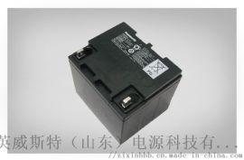 松下EPS/UPS蓄电池 免维护铅酸蓄电池38Ah