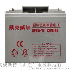EPS/UPS蓄电池 长寿命蓄电池 17Ah免维护