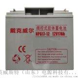 EPS/UPS蓄電池 長壽命蓄電池 17Ah免維護