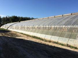 日光温室大棚设计造价