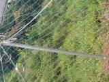 供應廣特邊坡防護勾花網