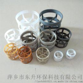 塑料鲍尔环填料塑料散堆填料环保填料规格齐全