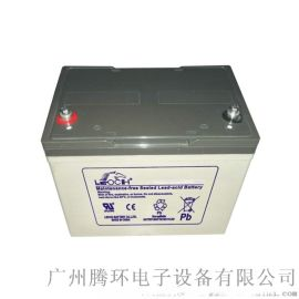 四川蓄电池 理士DJM1280S铅酸蓄电池80AH