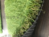 户外幼儿园草坪 人造塑料草坪DELI30BSS