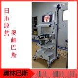 日本OLYMPUS電子支氣管鏡BF-1T260型號
