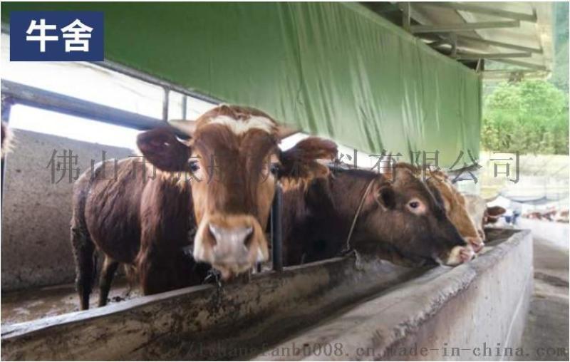 畜牧养殖牛场卷帘布 保温防寒猪场鸡场卷帘定做
