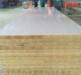 彩鋼淨化板彩鋼岩棉淨化板淨化板淨化板廠家