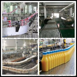 玉米豆类粗粮饮料设备 日产2000件谷物饮料生产线