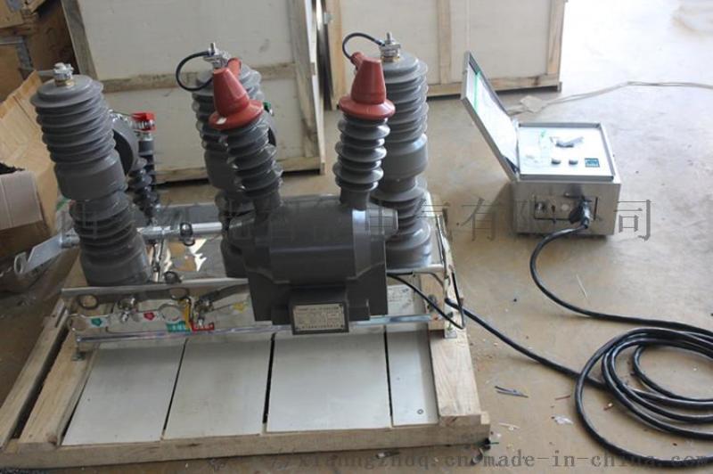 zw32-12户外高压柱上10kv智能带看门狗真空断路器现货