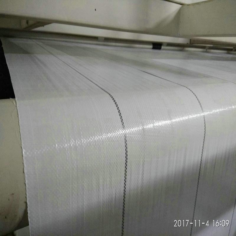 大棚白色地布, 寧夏6米寬PP地布