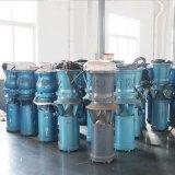 南部沿海地区临时排水用泵