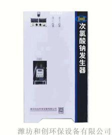 电解盐次氯酸钠发生器/农村安全饮水消毒柜