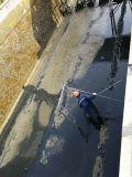 新建污水处理池交接缝漏水堵漏