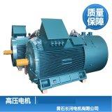 生產供應高壓電機 中型高壓電機 全國質保