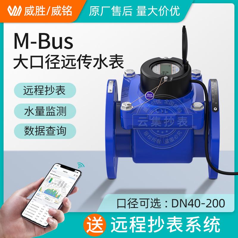 威銘/威勝M-Bus大口徑遠傳水錶DN40 免費配套遠程抄表系統