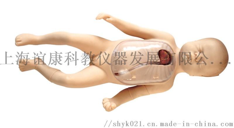 新生兒外週中心靜脈插管模型