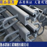 C60型单组式伸缩缝 轨道橡胶弹性垫板