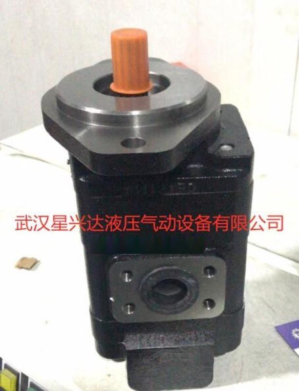 雙聯齒輪油泵CBG2080/2063