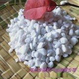 白卵石厂家供应 白石鹅卵石 盆栽铺面鹅卵石 白石子