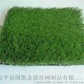 衡水草坪大全   衡水熱銷草坪網