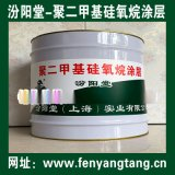 聚二甲基矽氧烷塗料材料、牆體防水防腐